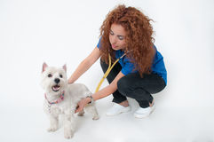 Female vet with dog Stock Images