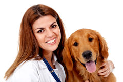 Female vet with a dog Stock Photography