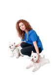 Female vet with dogs Stock Photos
