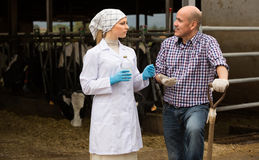 Female vet and farm worker in cowshed Stock Photos