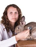 A female vet holding a rabbit Royalty Free Stock Image