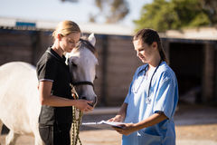 Female vet showing reports to jockey standing by horse. At barn stock images
