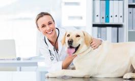 Female veterinarian examining dog. Portrait of confident female veterinarian examining dog in hospital stock images