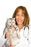 Female veterinarian holding a cat stock images