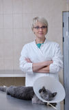 Female veterinary Stock Photo