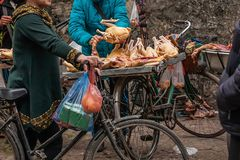 Female vietnamese butcher cutting raw of chicken on a steel tray on bicycle, local street butcher's shop at Lao Kai, North. Vietnam. Shallow dept of royalty free stock images