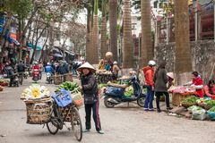A female vietnamese street vendor with old bicycle and fruits on the bamboo baskets on Lao Kai street, Vietnam-China border. Lao Cai, Vietnam - FEBRUARY 29, 2012 royalty free stock image
