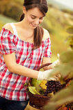 Female vintner Royalty Free Stock Photography