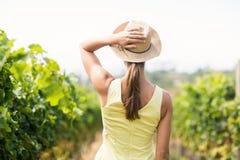 Female vintner in hat. Standing in vineyard Royalty Free Stock Image