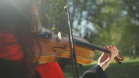 Female violinist plays on a forest background. Close-up of a violin soundboard. The strings and the bow. The violin on the shoulder of a beautiful woman. Female stock video footage