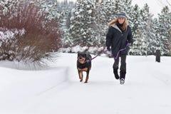 Female walking a dog royalty free stock photography