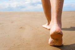 Female, walking down the beach. A woman's feet as she walks on the sand on the beach Stock Photos