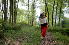 A female walking in forest Stock Image