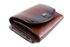Female wallet   Isolated Royalty Free Stock Image