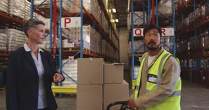 Female warehouse manager and male worker in loading bay 4k stock footage