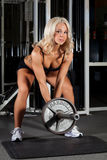 Female Weight Lifter. Pretty blonde female body builder lifting weights Stock Image