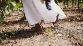 Female in white dress walking along grape plants at vinery. Female in white dress with leg accessories walking along wine grape plants at vinery on summer sunny stock footage