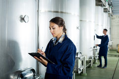Female winery employee in uniform taking off data Stock Photography