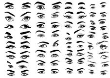 Female Woman Eyes And Brows Image Collection Set. Fashion Girl Eyes Design. Vector Illustration Royalty Free Stock Photo