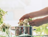 Female woman hand making seasonal traditional syrup of elderberry flowers royalty free stock photos