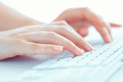 Female woman office worker typing on the keyboard Royalty Free Stock Image