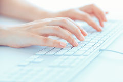 Female woman office worker typing on the keyboard Stock Images