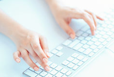 Female woman office worker typing on the keyboard Royalty Free Stock Images