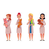 Female, woman veterinarian doctors, vets holding cat, parrot, dog, pig Royalty Free Stock Images