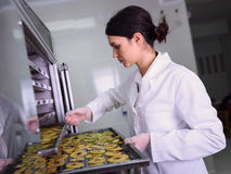 Female worker on food dryer dehydrator machine Royalty Free Stock Image