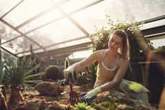 Female worker gardening in greenhouse Stock Photo