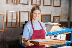 Female Worker Holding Mold At Paper Factory Royalty Free Stock Photography