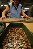 FEMALE WORKER IN  ITALIAN FACTORY Stock Photo