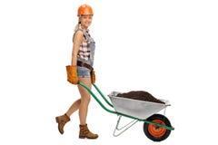 Female worker pushing wheelbarrow full of dirt Stock Images