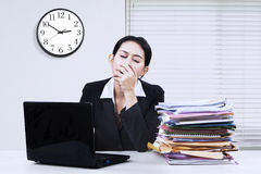 Female worker yawning in the office Stock Photos