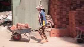 Female workers stock video footage