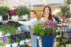 Female Workers Working In Flower Shop Royalty Free Stock Photography