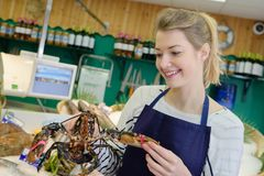 Female working holding lobster in fish supermarket Royalty Free Stock Images