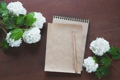 Female workplace blogger, reporter or artist for inspiration with flowers of viburnum and a sketchbook and pencil. Top view. Stock Images