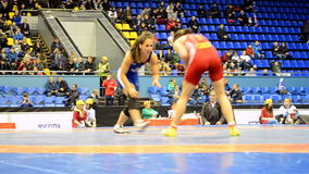 Female wrestling tournament in Kiev, Ukraine, stock video footage