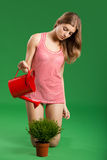 Female young gardener Stock Images