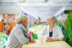 Females in cafe Stock Images