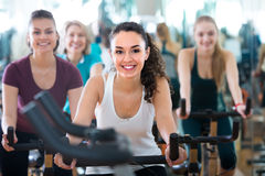 Females cycling in sport club Stock Photos