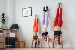 Females doing handstand pose near wall. Mother and daughters exercising at home, sport, family Stock Photography