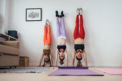 Females doing handstand pose near wall. Mother and daughters exercising at home, sport, family Stock Photos