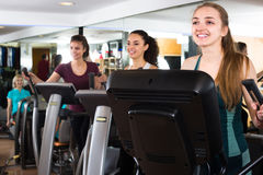 Females riding cardiovascular trainers. In modern gym for women and  smiling Stock Images