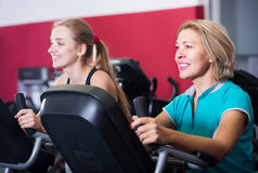 Females riding stationary bicycles in gym Stock Photography