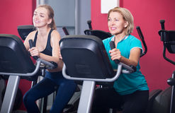 Females riding stationary bicycles in gym Royalty Free Stock Image