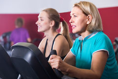 Females riding stationary bicycles in gym Royalty Free Stock Photo