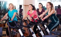 Females training on exercise bikes Royalty Free Stock Images