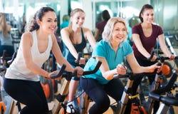 Females training on exercise bikes Stock Images